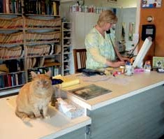 Calm Animal Care Lobby